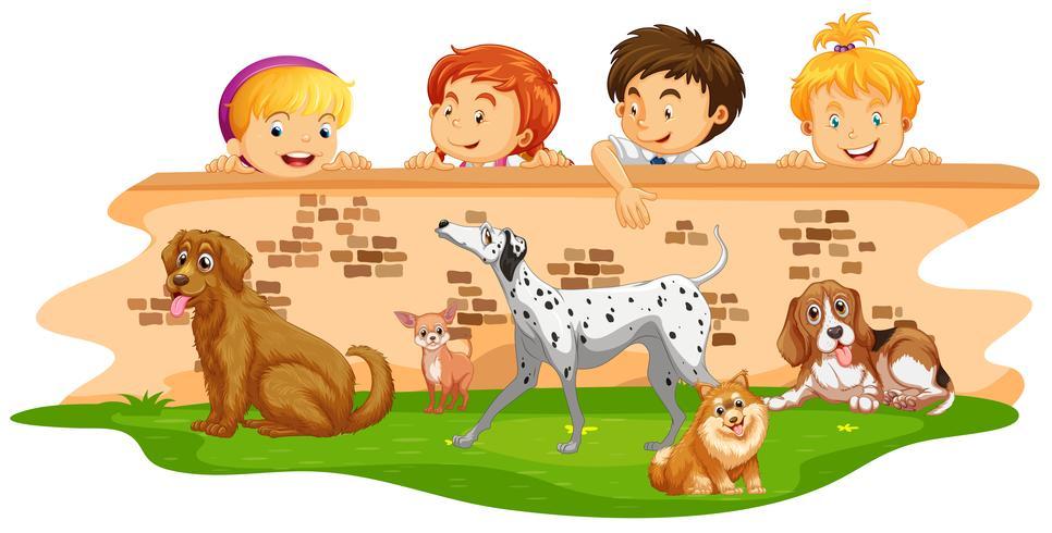 Kinder, die Hunde über der Wand betrachten