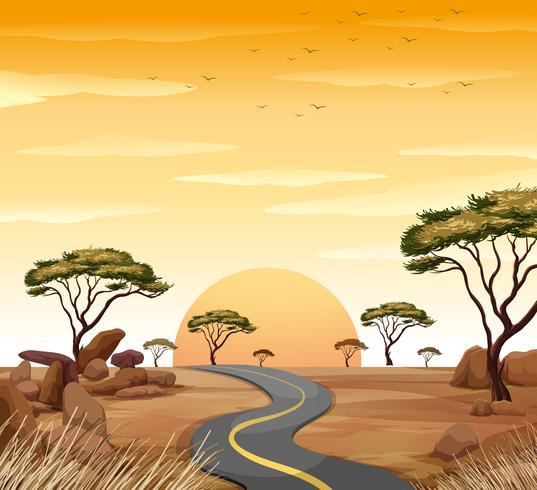 Scene with empty road at sunset