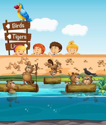 Enfants regardant les castors dans le zoo