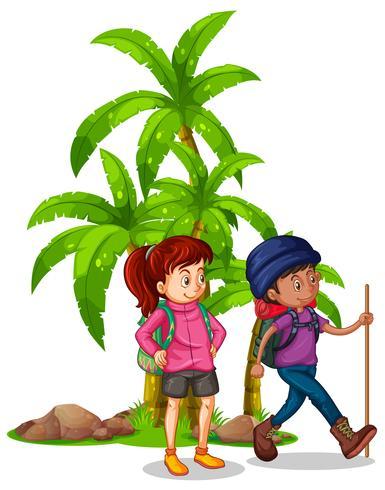 Dois caminhantes andando na floresta