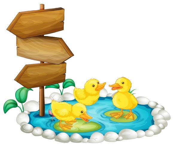 Letrero de madera y patos en el estanque. vector