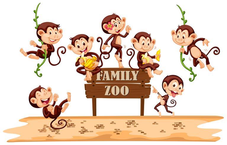 Beaucoup de singes sur le signe du zoo