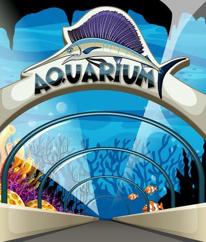 Aquariumscène met onderwaterleven vector