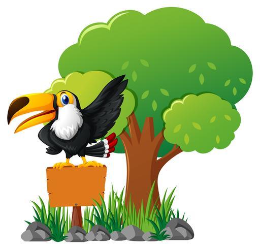 Pássaro Tucano na placa de madeira no jardim