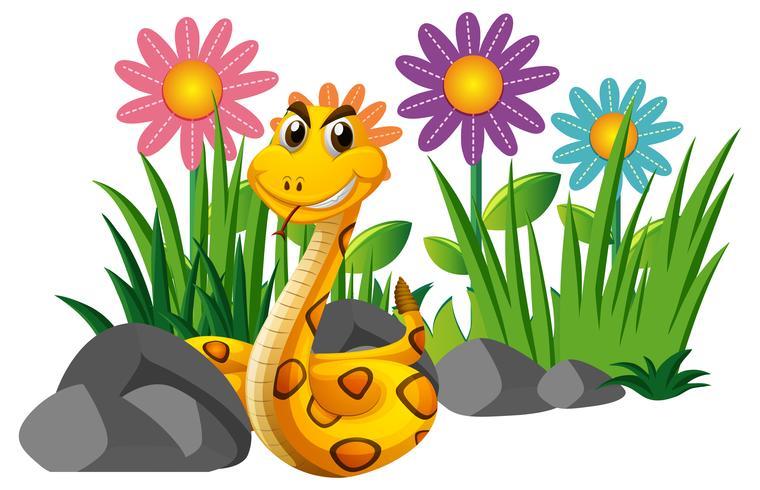 Chocalho, cobra, em, jardim flor