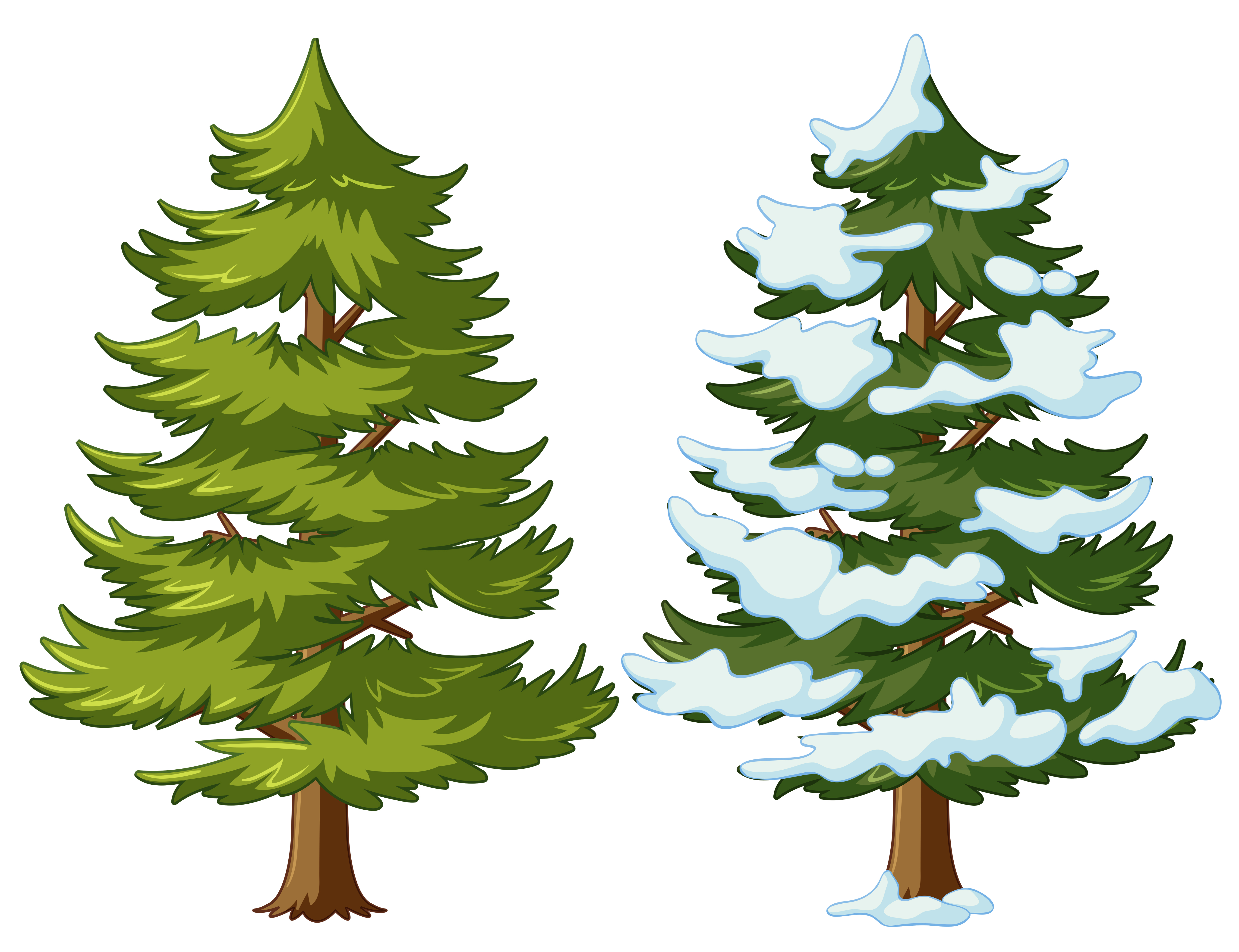 Pine tree with and without snow - Download Free Vectors ...
