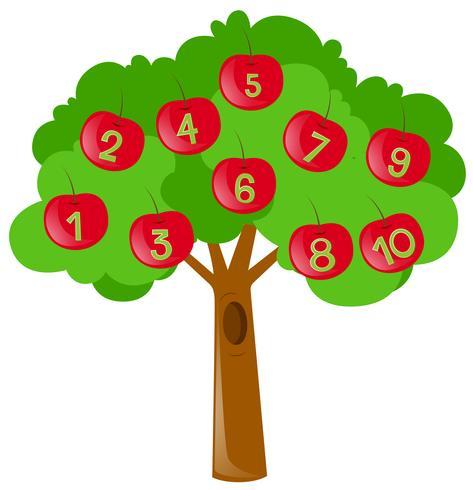 Zahlen zählen mit roten Äpfeln am Baum