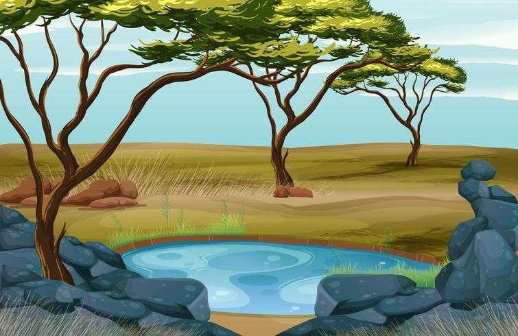 Escena con pequeño estanque en el campo