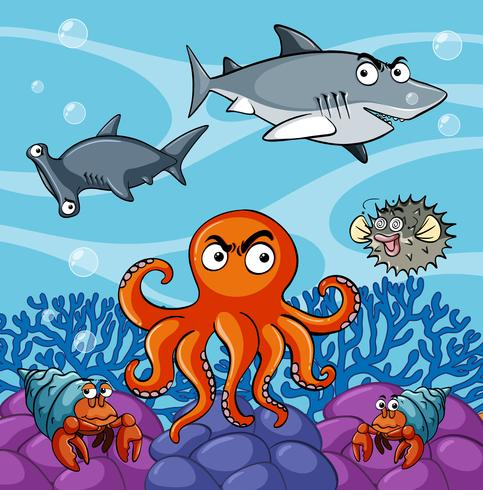 Havsdjur som bor under havet