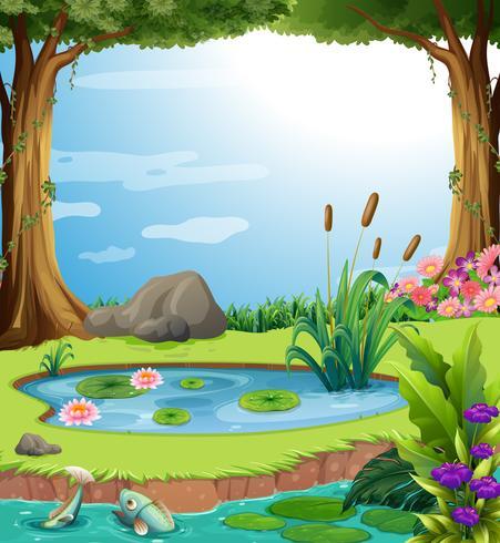 Scène de la forêt avec des poissons dans l'étang