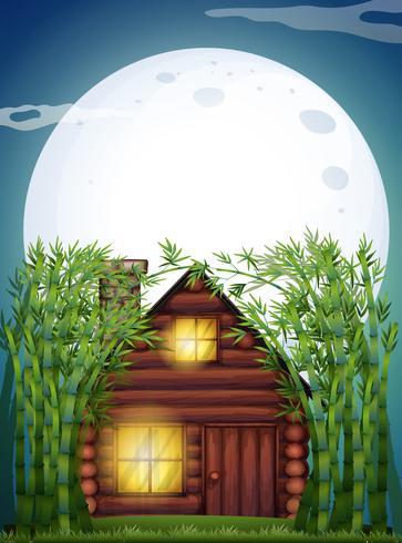 Scena con capanna di legno di notte