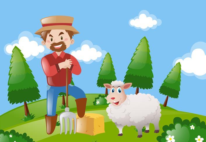 Granjero y ovejas en la granja
