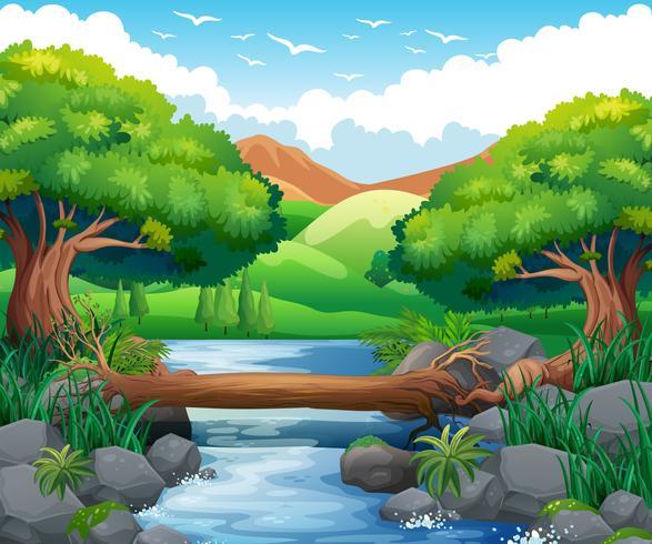 Scen med flod genom skogen