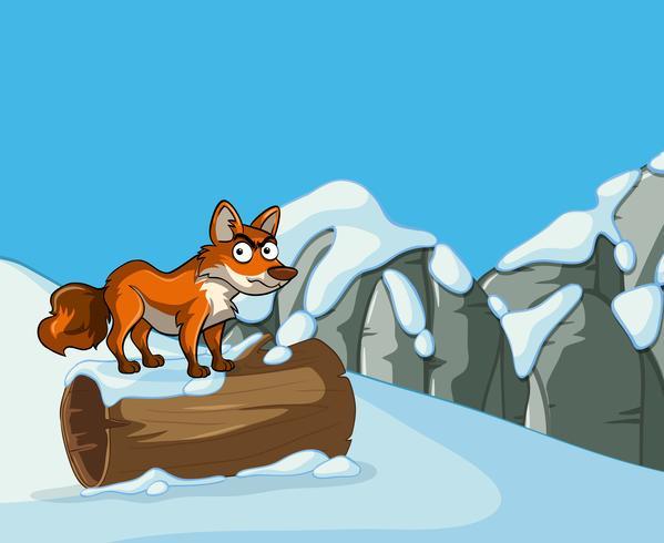 Wild fox on snow mountain