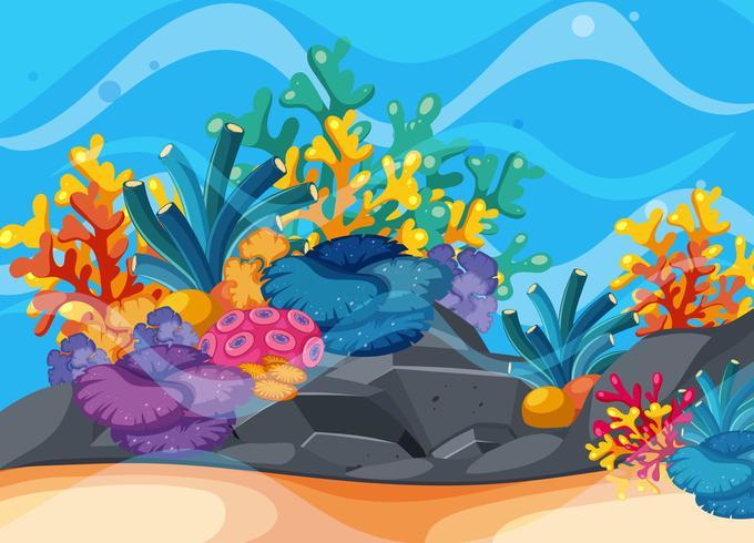Escena de fondo con arrecifes de coral bajo el agua