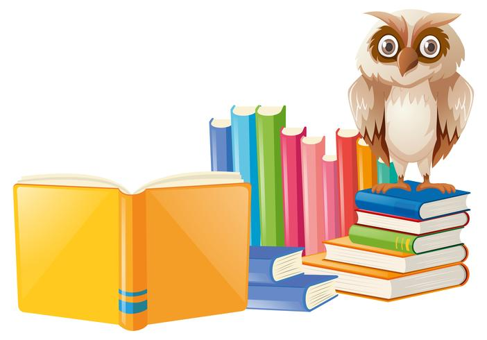 Brown owl and many books