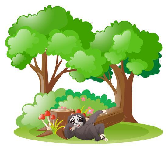 Sloth i skogen vektor