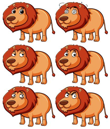 Lion with different expressions vector