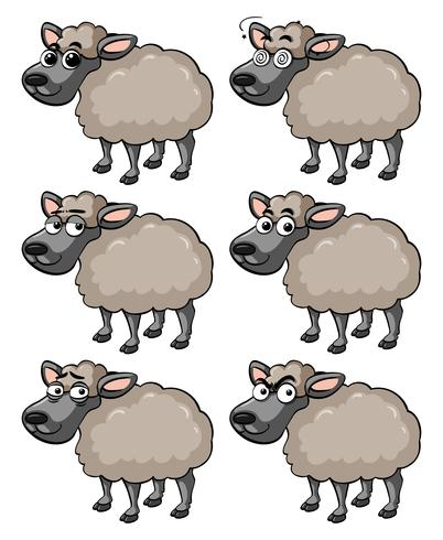 Sheep with different facial expressions vector