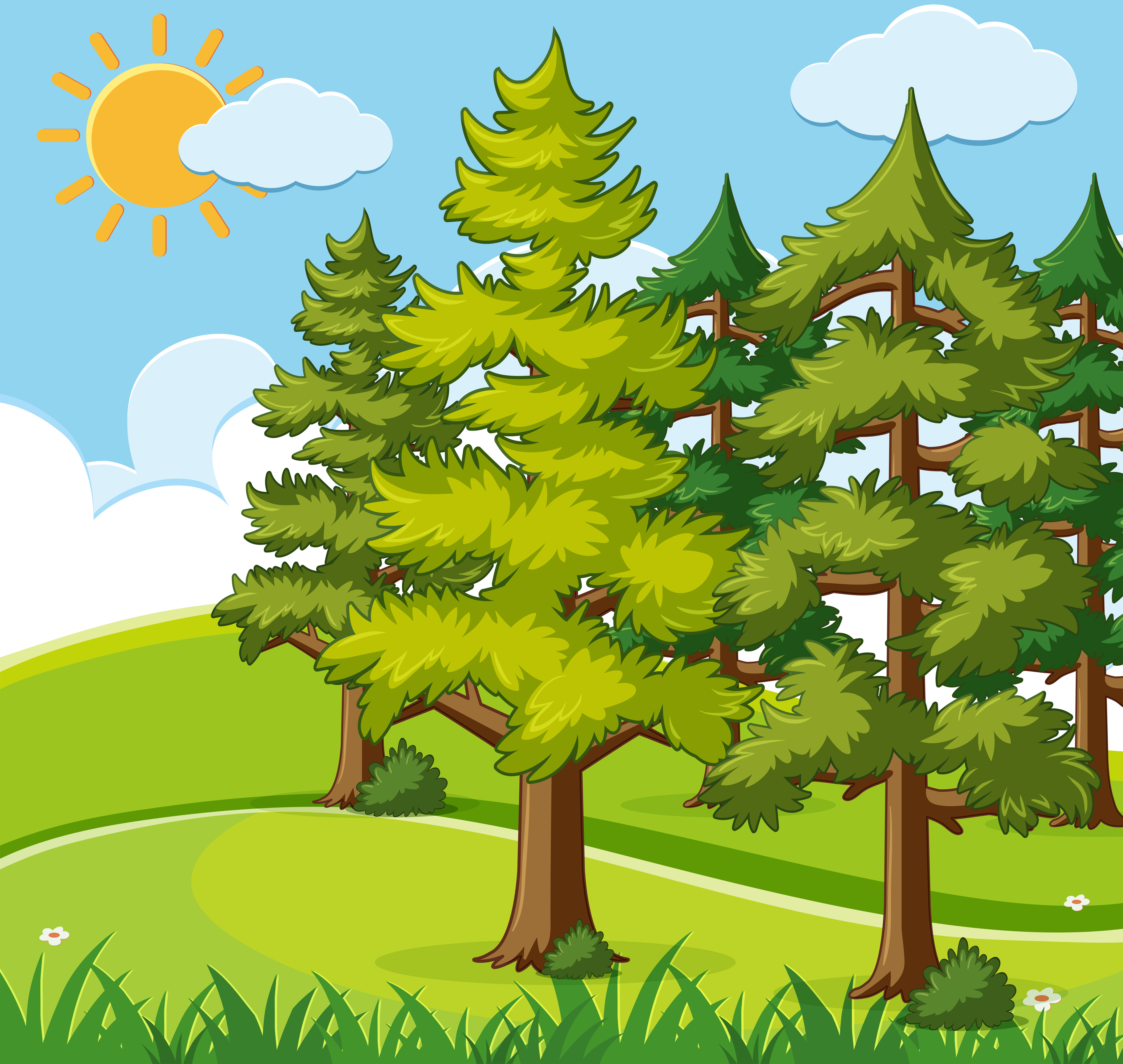 Background scene with pine trees on the field - Download ...