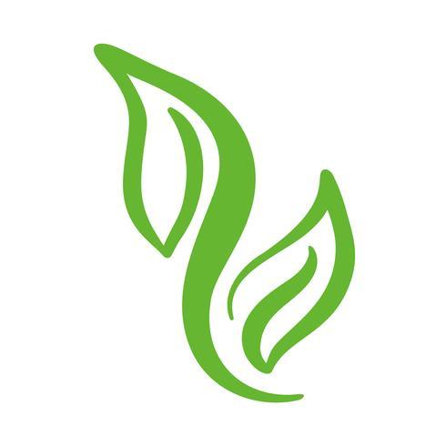 Logotipo de la hoja verde del té. Ecología naturaleza elemento vector icono limpio. Bio vegano caligrafía bio dibujado a mano ilustración