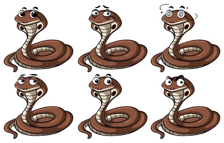 Cobra slangen met verschillende emoties vector