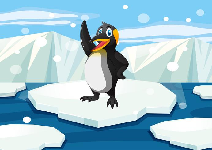 Penguin standing on iceberg vector