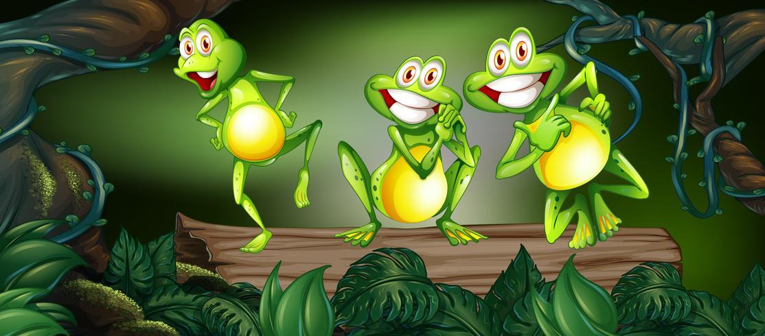 Trois grenouilles dansant sur le journal dans la jungle