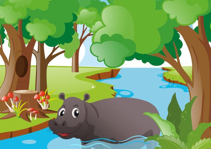 Hipopótamo nadando no rio