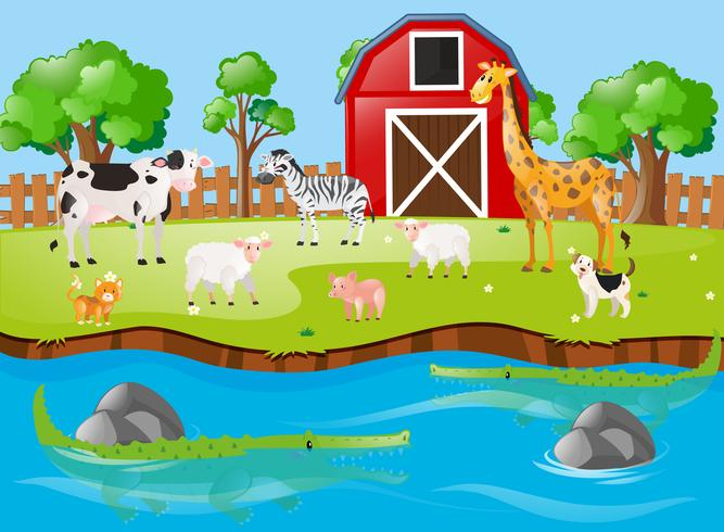 Many animals by the river