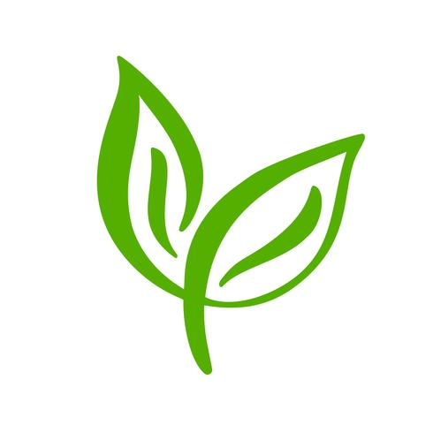 Logo of green leaf of tea  Ecology nature element vector icon  Eco
