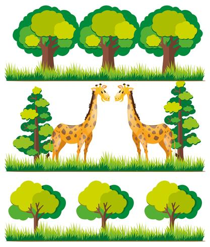 Giraf in het park