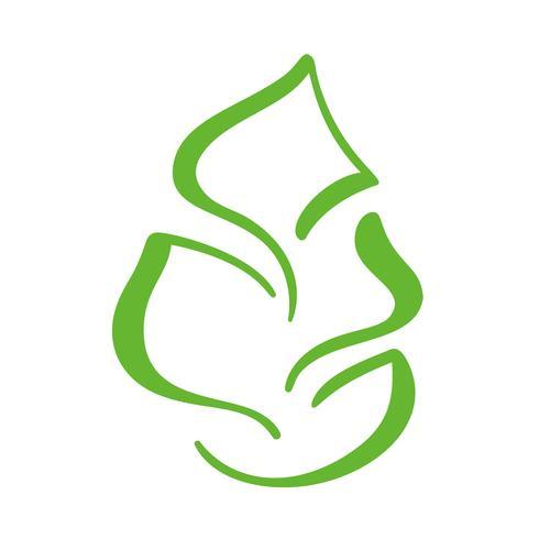 Logotipo de la hoja verde del té. Icono de vector de elemento de naturaleza ecología. Bio vegano caligrafía bio dibujado a mano ilustración