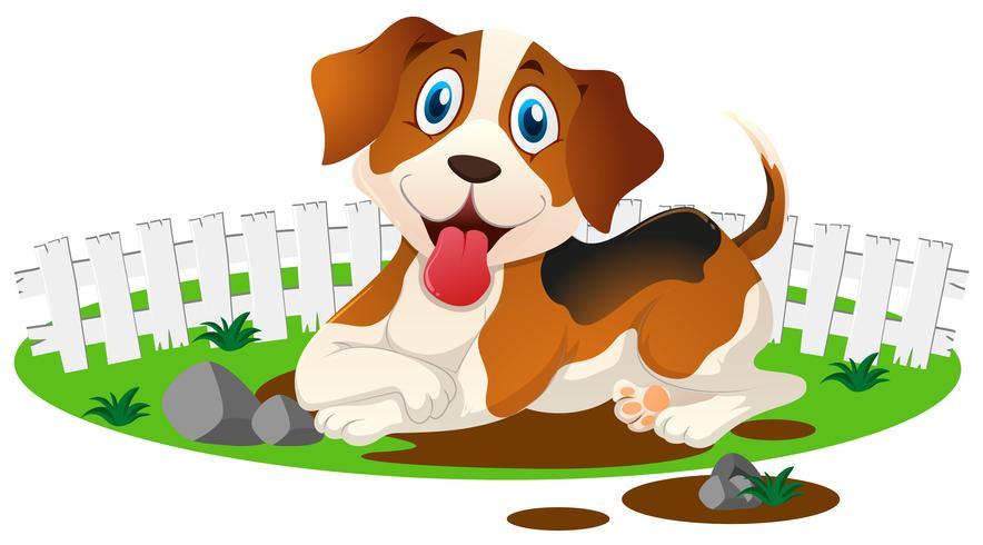 Cachorrinho na poça de lama