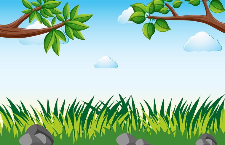 Scen med gräs i trädgården vektor