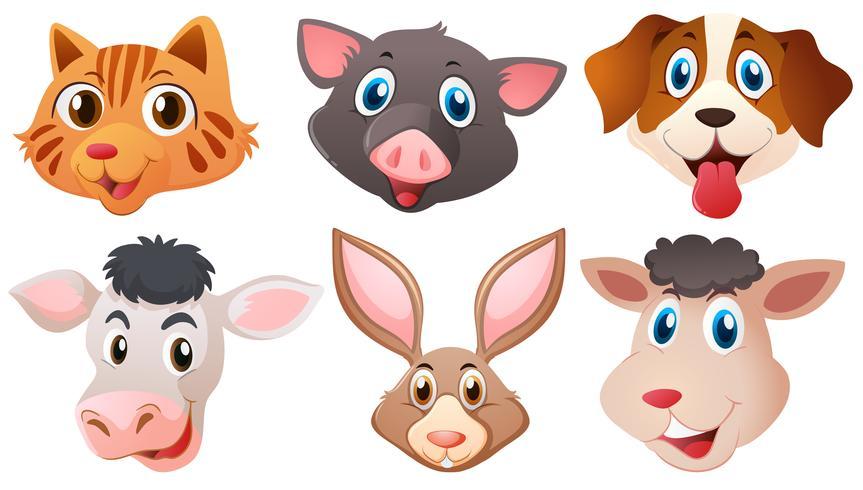 Verschillende hoofden van schattige dieren