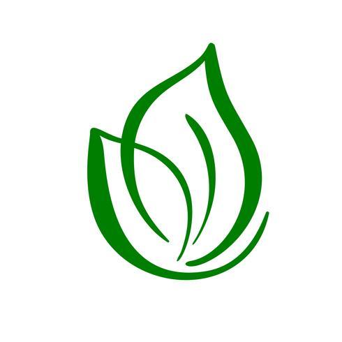 Växt logo av grönt blad av te. Ekologi naturelement vektor ikon. Eco veganisk bio kalligrafi handritad illustration