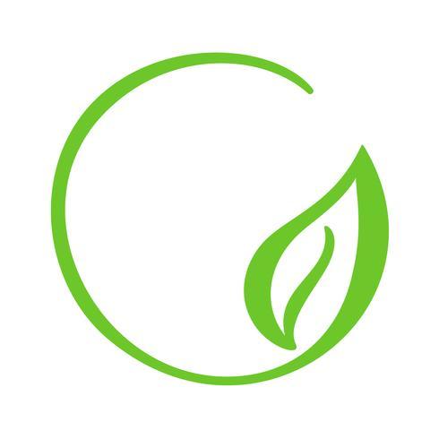Logo of green leaf of tea. Ecology nature element vector icon. Eco vegan bio calligraphy hand drawn illustration
