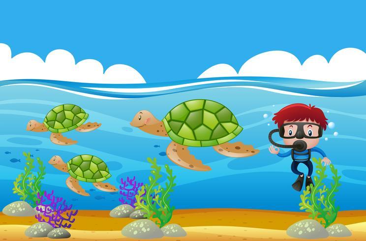 Immersione subacquea che si tuffa underwater con le tartarughe