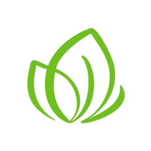 Logo av grönt blad av te. Ekologi naturelement vektor ikon organisk. Eco veganisk bio kalligrafi handritad illustration