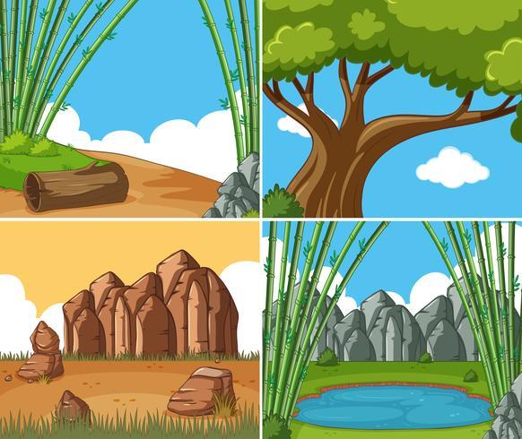 Cuatro escenas de la naturaleza durante el día.