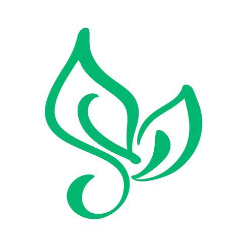 Logo of green leaf of tea. Ecology nature element vector icon gluten. Eco vegan bio calligraphy hand drawn illustration
