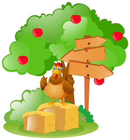 Carteles de madera y pollo sobre heno.