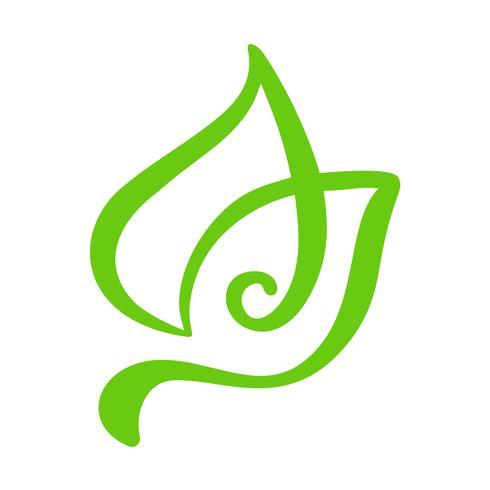 Logotipo da folha verde do chá. Jardim do ícone do vetor do elemento da natureza da ecologia. Caligrafia bio bio vegano mão ilustrações desenhadas