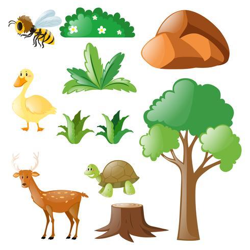 Nature sertie d'animaux et de plantes