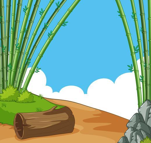 Scen med bambu på kullen vektor