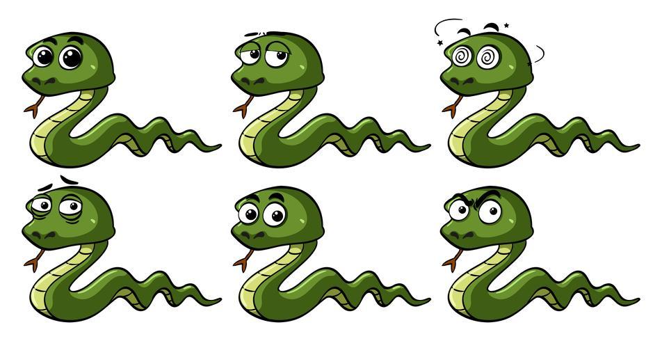 Cobras verdes com emoções diferentes
