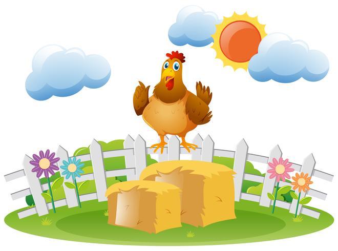 Kyckling står på höstack vektor
