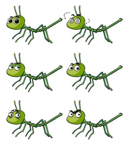 Stick insect met verschillende emoties