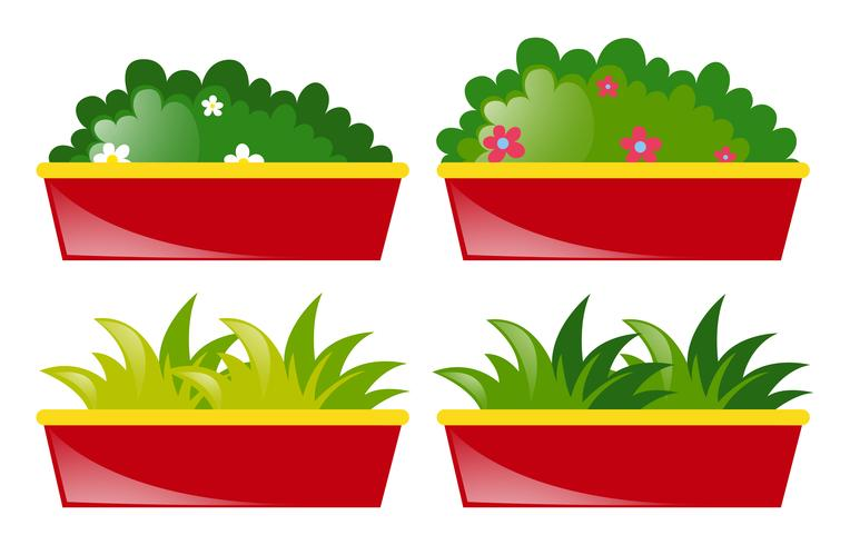 Four pot of flowers and grass vector